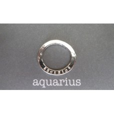 Marlene Hounam Silver Aquarius Sentiment Loop
