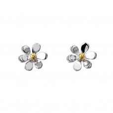 Silver Medium Daisy Studs